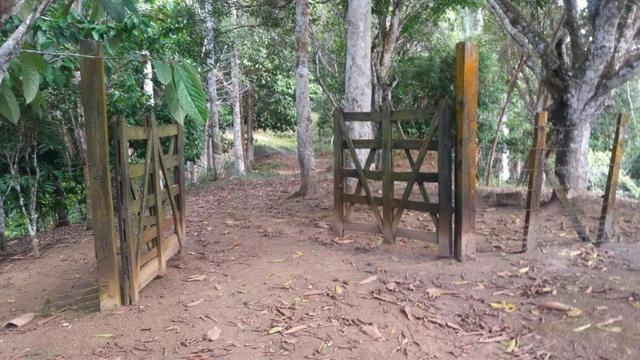 Cidade ilhéus região Japu, Sitio 72 hectares - Foto 8