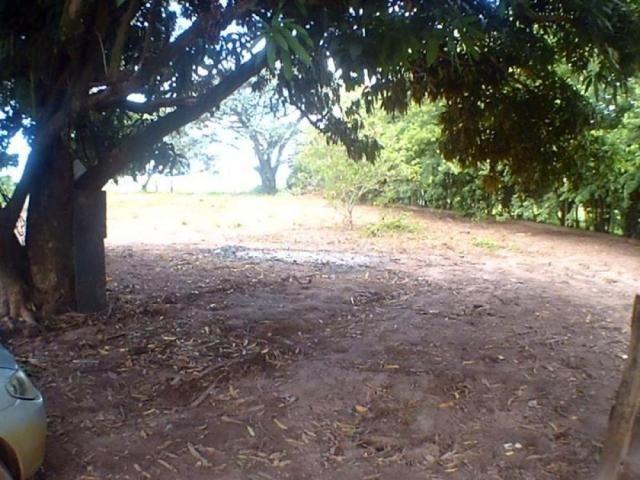 Chácara para alugar em Loteamento edem leste (zona rural), Sao jose do rio preto cod:L632 - Foto 3