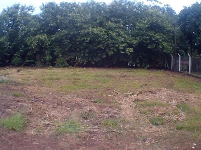 Chácara para alugar em Loteamento edem leste (zona rural), Sao jose do rio preto cod:L632 - Foto 12