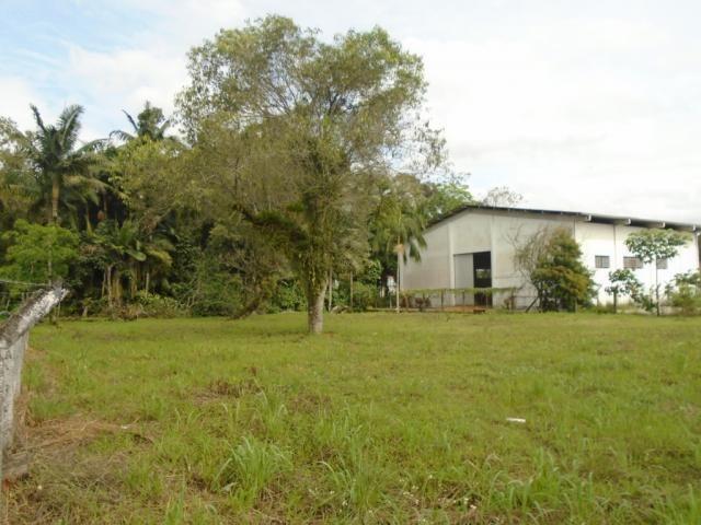 Terreno para alugar em Pirabeiraba, Joinville cod:00444.010 - Foto 3