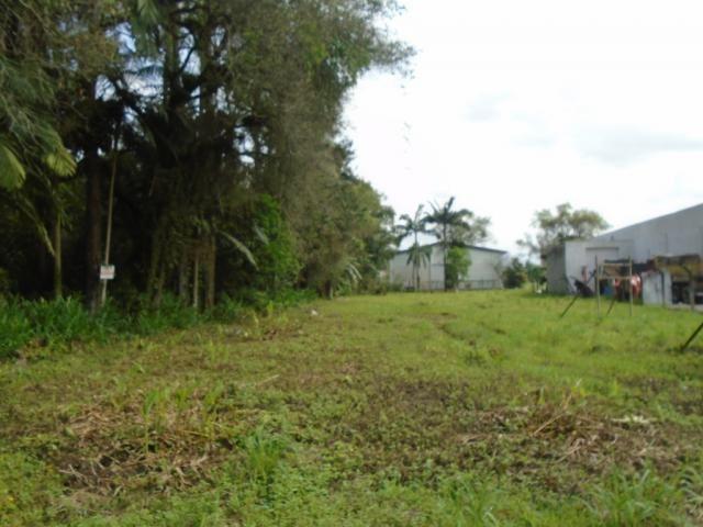 Terreno para alugar em Pirabeiraba, Joinville cod:00444.007 - Foto 6