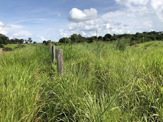 Fazenda Medindo 257,00 ha (Documentada, Apta a fazer financiamentos) - Foto 12