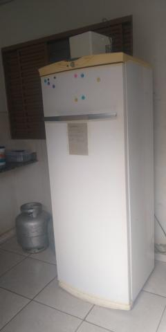 Freezer vertical fros free