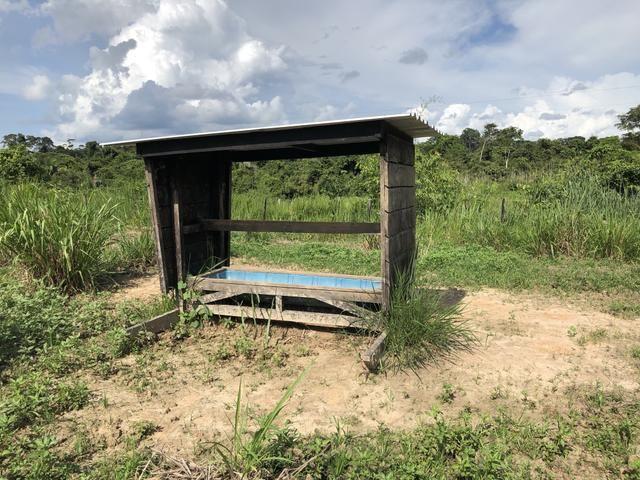 Fazenda Medindo 257,00 ha (Documentada, Apta a fazer financiamentos) - Foto 7