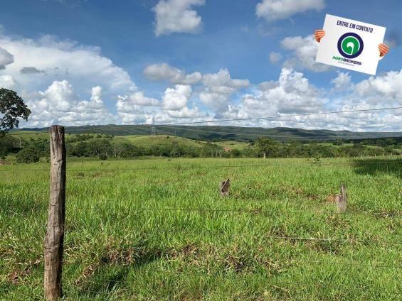 Fazenda 1.040 ha acorizal - Foto 12