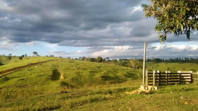 Fazenda a venda no extremo sul da bahia 170 ha - Foto 7