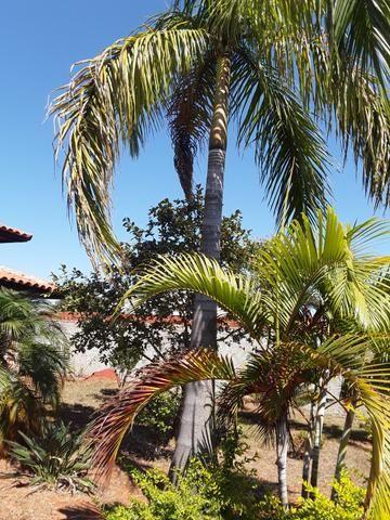 Casa em condomínio Ponte Alta - Foto 7