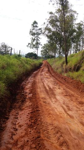 Fazenda Agricultura e Pecuária-Completa Arrendamento - Foto 6