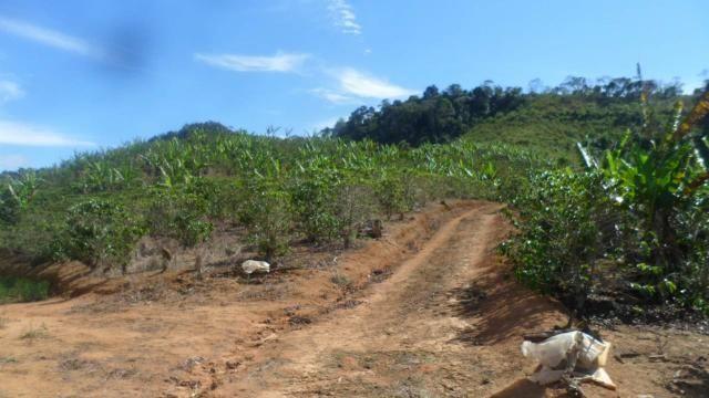 Estou vendendo ótimo terreno muito bom tem água lugar bom sinal telefon - Foto 14