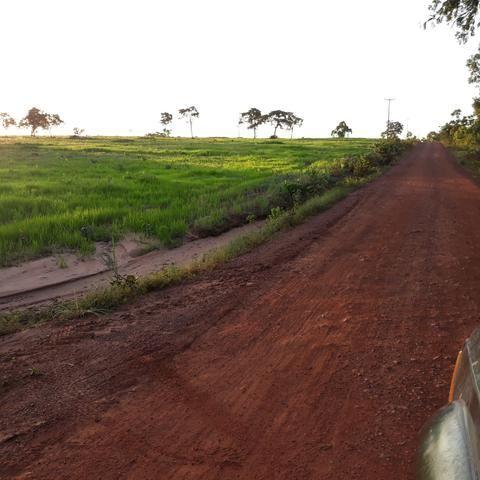 Fazenda centro sul do Maranhão - Foto 4