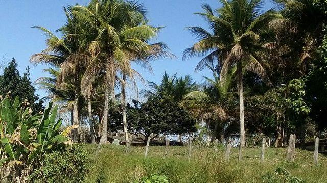 Imóvel rural no interior da Bahia.  - Foto 19