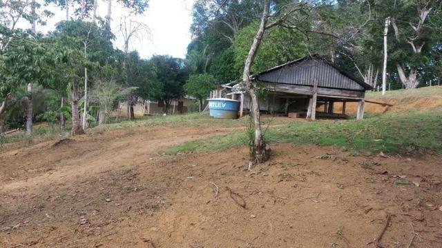 Cidade ilhéus região Japu, Sitio 72 hectares - Foto 2