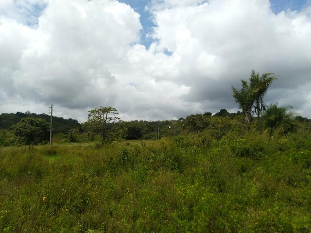 Terreno em Bonito - Foto 2