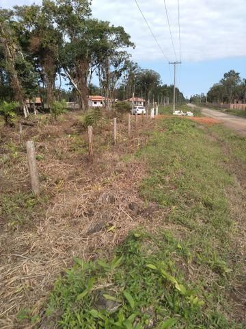 Sítio em Araquari aceito troca - Foto 9