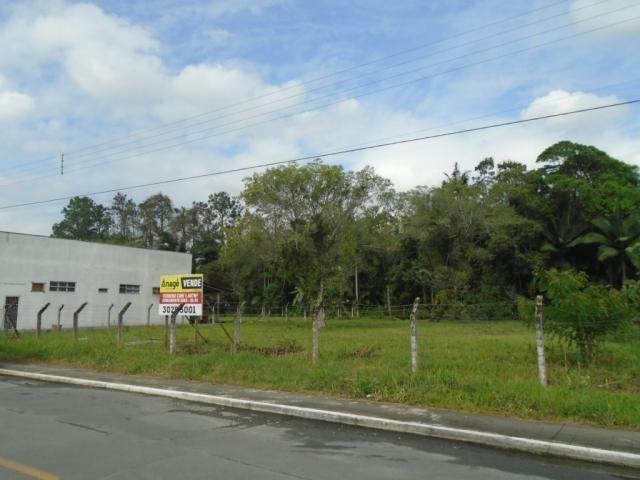 Terreno para alugar em Pirabeiraba, Joinville cod:00444.010