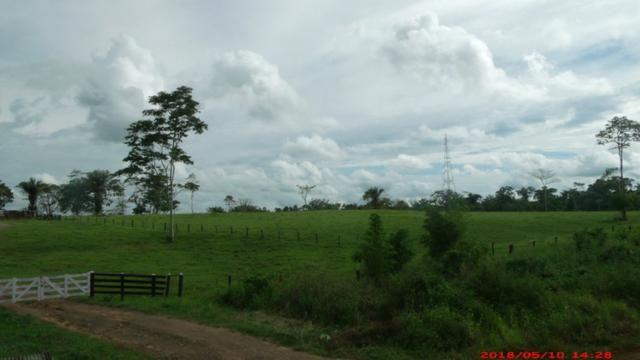 Vendo terra no Bujari