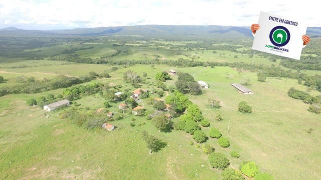 Fazenda 1.040 ha acorizal - Foto 4