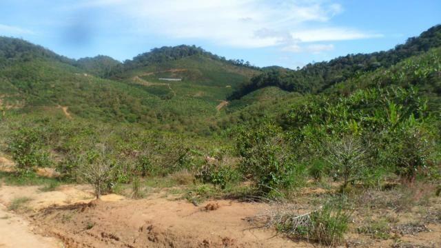 Estou vendendo ótimo terreno muito bom tem água lugar bom sinal telefon - Foto 8