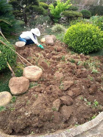 Jardinagem Curitiba - Foto 4