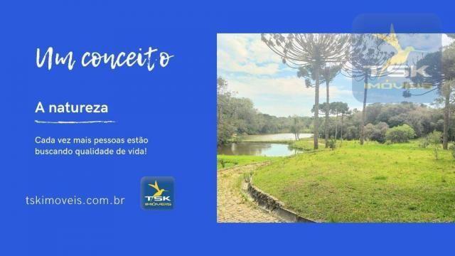 CH0369 Chácara à venda 86500 m² por R$ 1.850.000 São José dos Pinhais/PR 34 min centro Cur - Foto 3