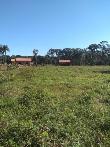 Sítio em Araquari aceito troca - Foto 5