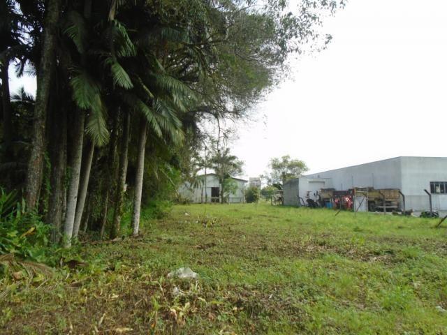 Terreno para alugar em Pirabeiraba, Joinville cod:00444.007 - Foto 4