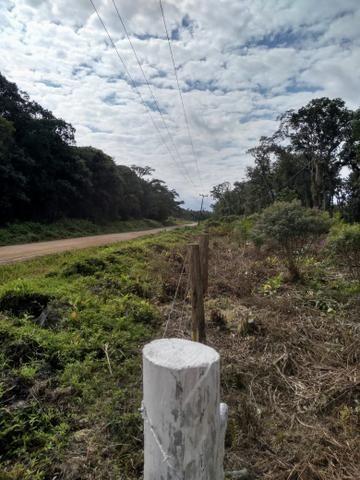 Sítio em Araquari aceito troca - Foto 11