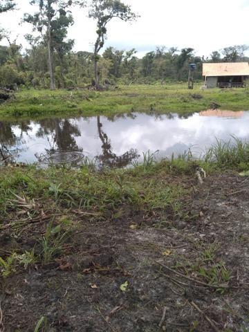 Sítio em Araquari aceito troca