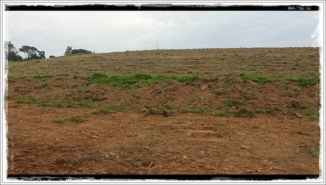 Vendo com urgência meu terreno em Ibiúna - Foto 6