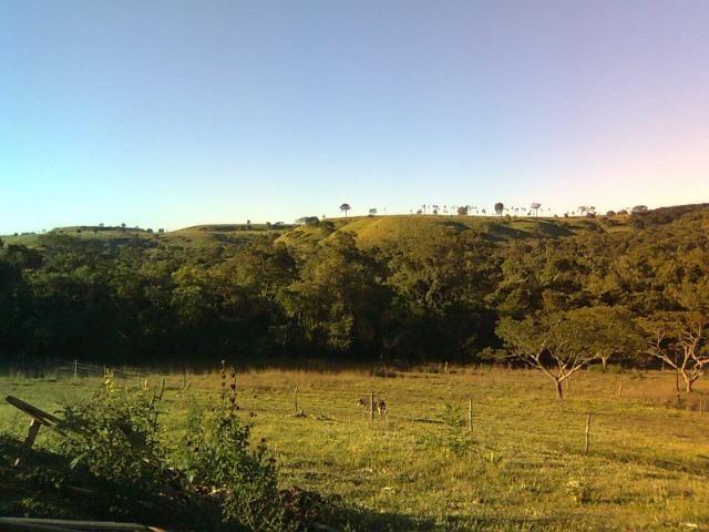 Vendo-Troco Sítio (área de terra rural) entre Leópolis e Cornélio Procópio PR