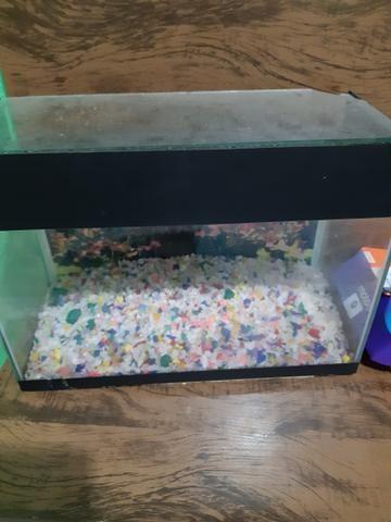 Vendo aquário top com bomba de oxigênio 130
