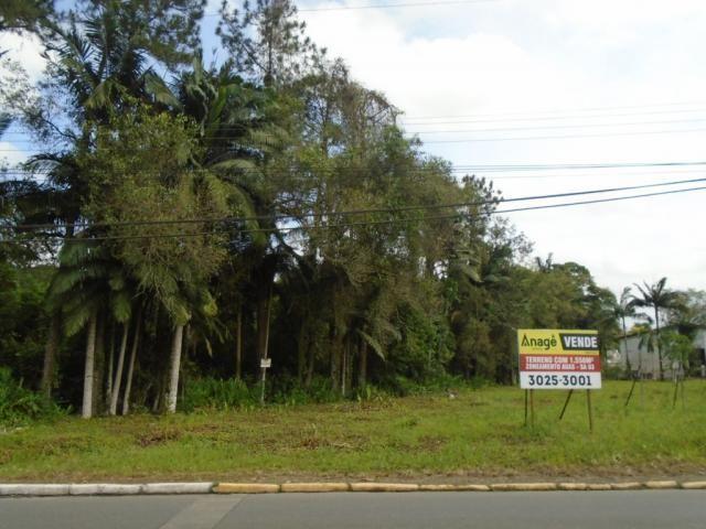 Terreno para alugar em Pirabeiraba, Joinville cod:00444.007