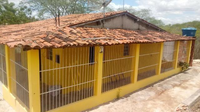 Ótima propriedade de 2.5 hectares, com casa sede, em Avencas de Cima-PE - Foto 3