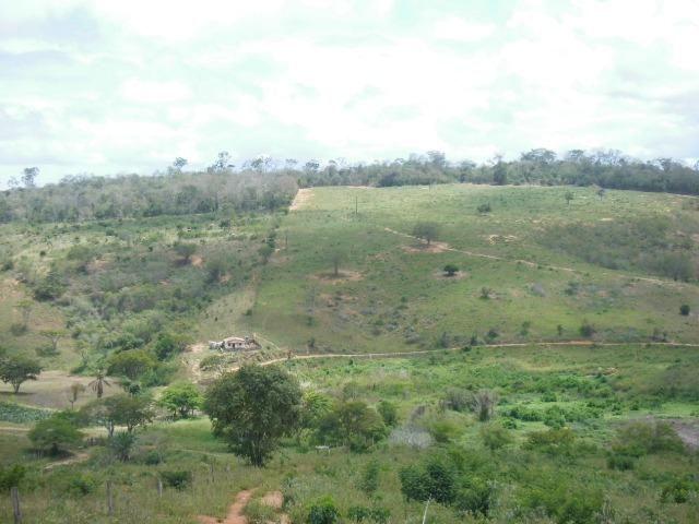 Mundo Novo Fazenda - Foto 18