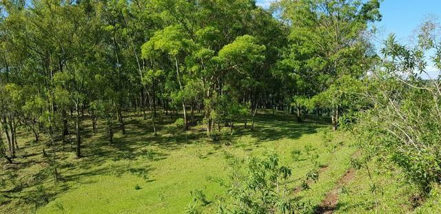 Vendo Sitio - Vale do Aracatu