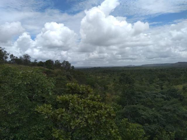 Propriedade Rural de 576 hectares de Mata e Cerrado no Piauí - Foto 8
