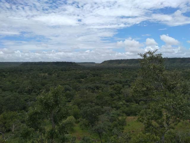 Propriedade Rural de 576 hectares de Mata e Cerrado no Piauí - Foto 5
