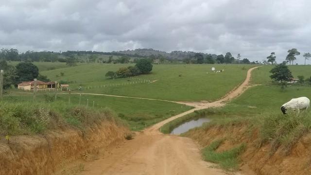 Fazenda a venda no extremo sul da bahia 170 ha - Foto 2