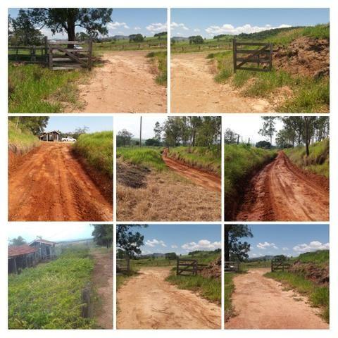 Fazenda Agricultura e Pecuária-Completa Arrendamento - Foto 11
