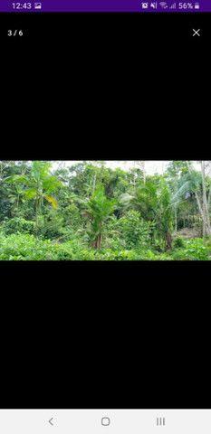 Terreno no rio tumuacar