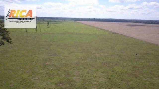 Fazenda à venda com 1.306 hectares, no distrito de Triunfo/RO - Foto 8