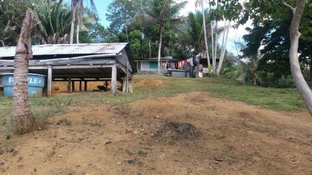Cidade ilhéus região Japu, Sitio 72 hectares - Foto 9