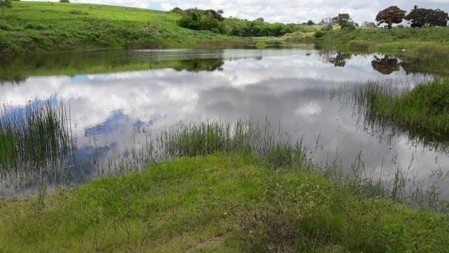 Fazenda com 170 hectares na região de monte alegre - Foto 5