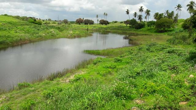 Fazenda com 170 hectares na região de monte alegre - Foto 17