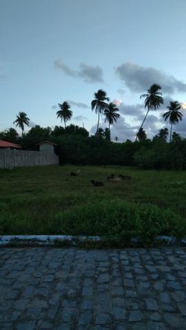 Vendo terreno em São Miguel dos Milagres