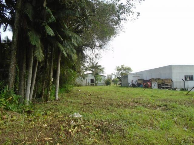 Terreno para alugar em Pirabeiraba, Joinville cod:00444.007 - Foto 5