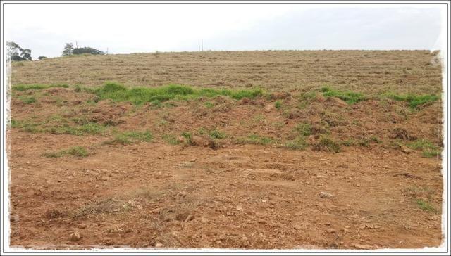 Vendo com urgência meu terreno em Ibiúna - Foto 4