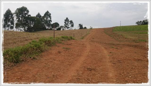 Vendo com urgência meu terreno em Ibiúna - Foto 2
