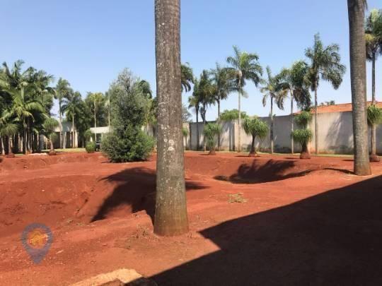 Alugue Casa de 5000 m² (Recanto dos Pinheiros, Cambé-PR) - Foto 20