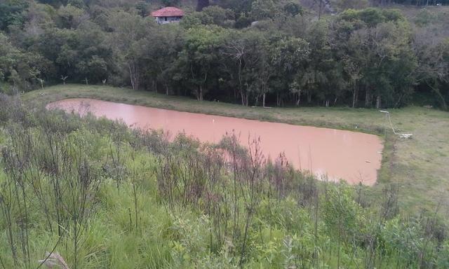 Entrada 30.000 + parc. Torrando terreno pra Chácara com Tanque. 6.000m² Quitandinha-PR - Foto 5